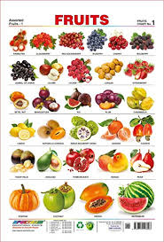 fruit names for kids. Perfect Kids Spectrum Pre  School Kids Learning Laminated Educational Fruits Name Wall  Chart Intended Fruit Names For Amazoncom