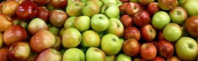 Apple Ripening And Storage