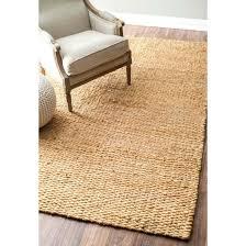 8 x 10 hand woven hailey jute natural rug