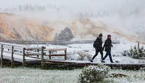 a snowy spring day at mammoth hot springs in yellowstone