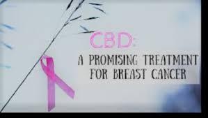 cbd cancer research institute