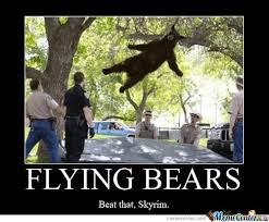 Flying Bear Memes. Best Collection of Funny Flying Bear Pictures via Relatably.com