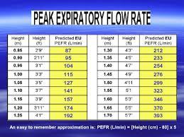 Normal Peak Flow Chart Pediatrics Asthma 2010 New Gina Guidelines Pediatric