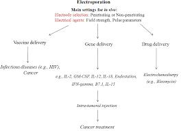 Electroporation Advantages And Drawbacks For Delivery Of Drug