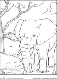 Small Picture free animal coloring pages for adults Coloring Pages of Elephant