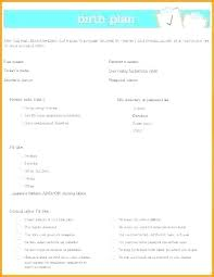 Birth Plan Check List Printable Birth Plan Template