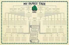 Details About Family Tree Chart Genealogy