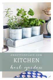 Kitchen Herb Garden Indoor