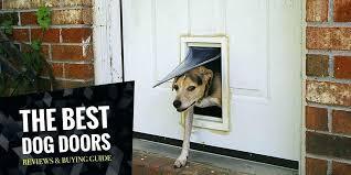 sliding door pet insert best dog door dog door insert sliding door sliding glass pet door
