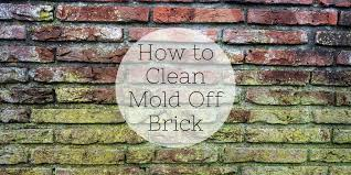 how to clean mold off brick brick