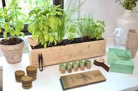 fleur du bien indoor herb garden kit