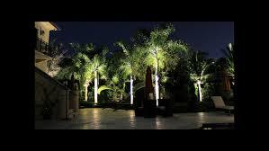 landscape lighting trees. Landscape Lighting For Backyard And Trees