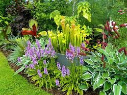 Douentza Garden - Reviews | Facebook