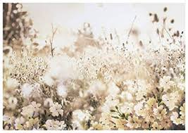 graham brown layered meadow landscape wall art on graham and brown wall art amazon with amazon graham brown layered meadow landscape wall art