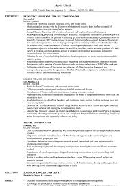 Travel Resume Examples Travel Coordinator Resume Samples Velvet Jobs 4