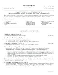 Director Of Operations Resume Operations Manager Cv Template