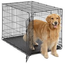 Midwest Dog Crate Size Chart Best Dog Crates 2020 For Dog Lovers Reviews Buyers Guide