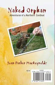 Naked Orphan Adventures Of A Northern Cardinal Reynolds Joan Parker 9781627472654 Amazon Com Books