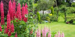 Small Picture 4 Garden Designs and Layouts Photo Ideas to Suit Your Lifestyle