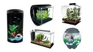 fish tanks with plus aquarium decorations tank accessories choosing guide betta decor diy aqua betta tank decor fish decorations