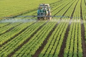 Risultati immagini per nitrati origine agricola