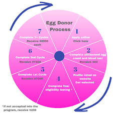 northern california fertility al center ivf infertility services bee an egg donor northern california fertility al center
