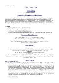 Resume Writing Programs Resume Template