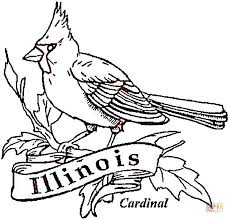 Illinois Coloring Pages Cardinal Bird Of Illinois Coloring Page Free