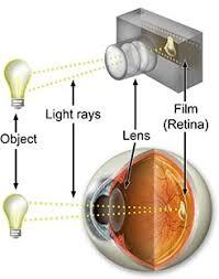 how track lighting works. How Track Lighting Works. Works