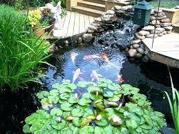 building a koi pond building ponds how to build a pond in your backyard build backyard building a koi pond