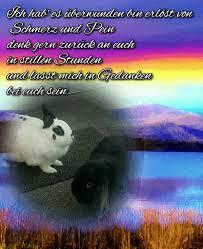 Lucy Du Warst Eine Treue Und Liebende Kaninchen Dame Und Immer
