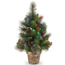 25 Small Yet Gorgeous Christmas Trees  ShelternessChristmas Trees Small
