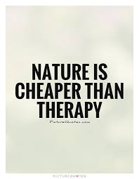 Therapy Quotes Amazing Nature Is Cheaper Than Therapy Picture Quotes