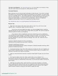Example Resume Showing Computer Skills Inspirational Resume Examples