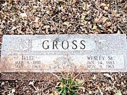 Wesley Gross Sr. (1883-1963) - Find A Grave Memorial
