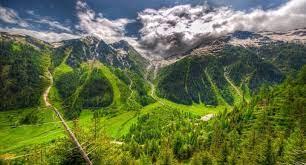Perteneciente o relativo a las montañas. Ecosistema Montanoso Definicion Caracteristicas Fauna Flora Y Ejemplos Ecologia Hoy