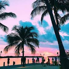 summer tumblr. Summer Tumblr. Interesting Goals Travel Photography Tumblr Sunset Palmtrees Beach Ocean And