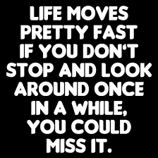 Ferris Bueller Life Moves Pretty Fast Quote Life Moves Pretty Fast Ferris Bueller's Day Off Quote Posters by 41