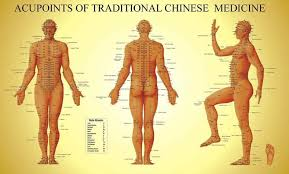 Chi Meridians Chart Acupuncture Cavitation Weight Management