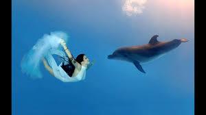фото девушки и дельфины