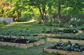 Planning A Kitchen Garden Kitchen Garden Piemonte Farm