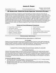 Hedge Fund Resume Example Resume Examples