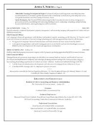 Financial Resume Sample Financial Consultant Resume Sample Financial ...