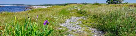 Tide Chart Wolfville Ns 12 Of The Best Things To Do In Nova Scotia Hike Bike Travel
