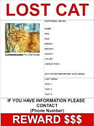 Missing Cat Poster Template Missing Poster Generator Make A Missing Poster Missing Poster