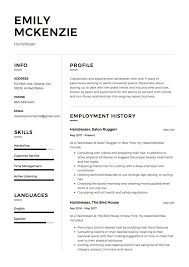 Hair Stylist Resume Sample Resumelift Com Resume Template Examples