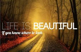 Life Is Beautiful Pictures And Quotes Best Of Life Is Beautiful Great Quote