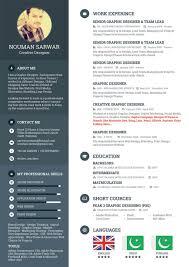 Web Design Experience Resume Web Designer Resume Top 24 CV Resume WordPress Themes Colorlib 24 20