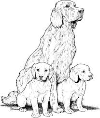Labrador With Puppies Coloring Page Free Printable Coloring Pages