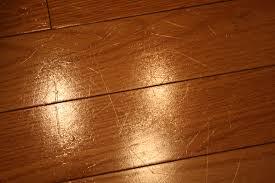 dog scratched hardwood floor repair